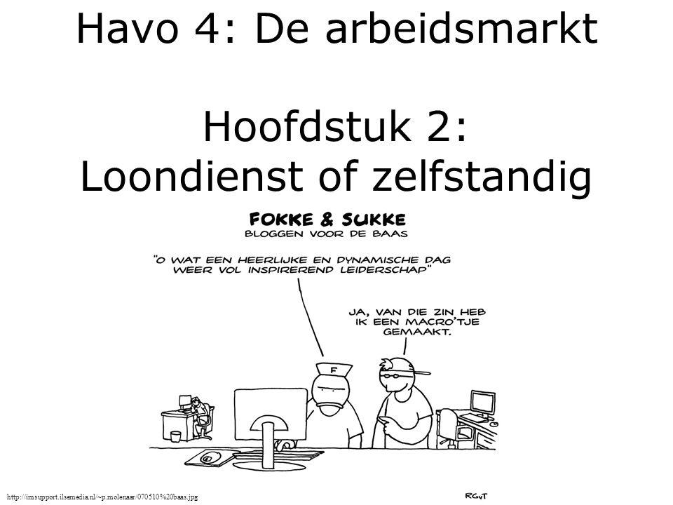 Havo 4: De arbeidsmarkt Hoofdstuk 2: Loondienst of zelfstandig