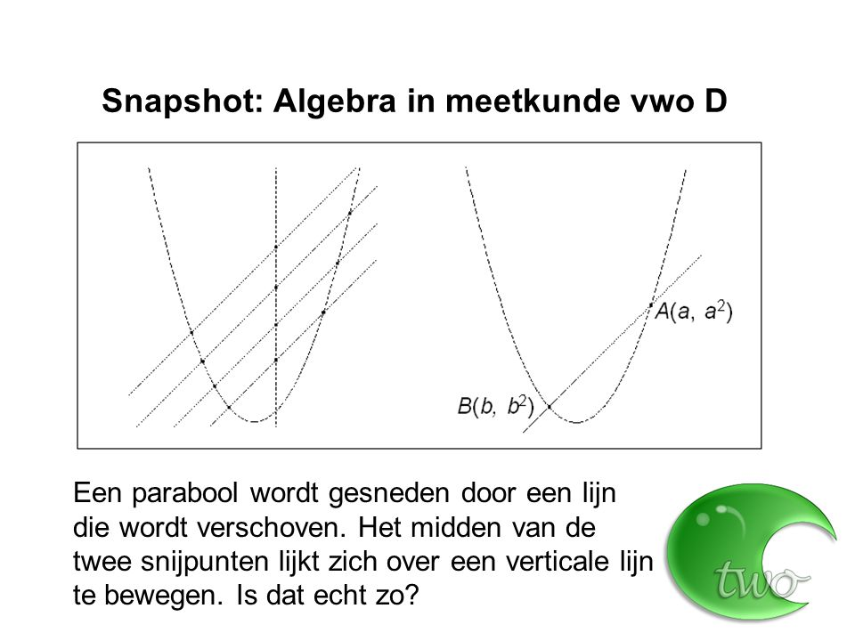 Snapshot: Algebra in meetkunde vwo D
