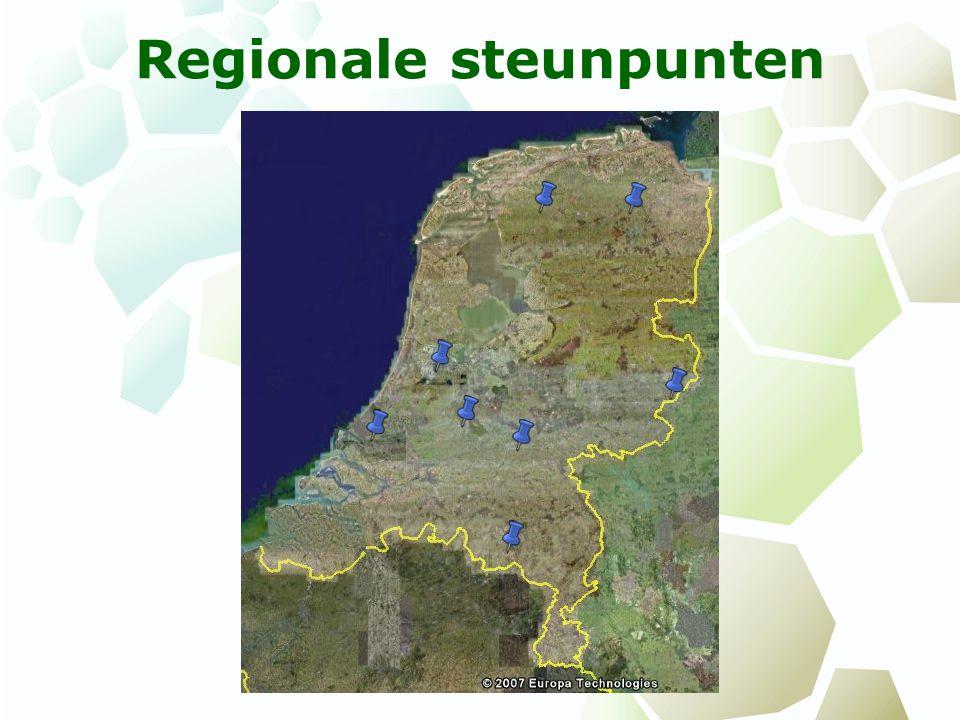 Regionale steunpunten