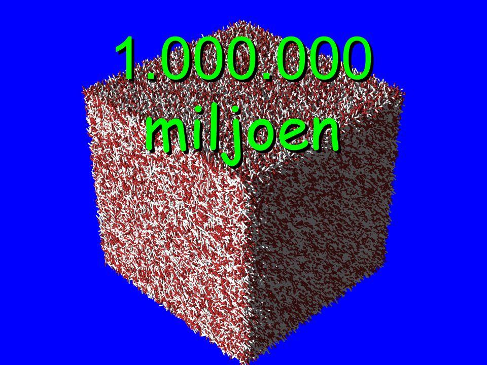 1.000.000 miljoen