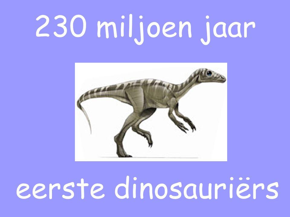 230 miljoen jaar eerste dinosauriërs