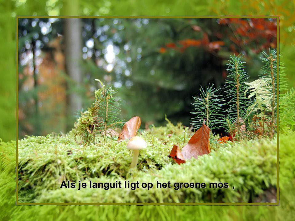 Als je languit ligt op het groene mos ,