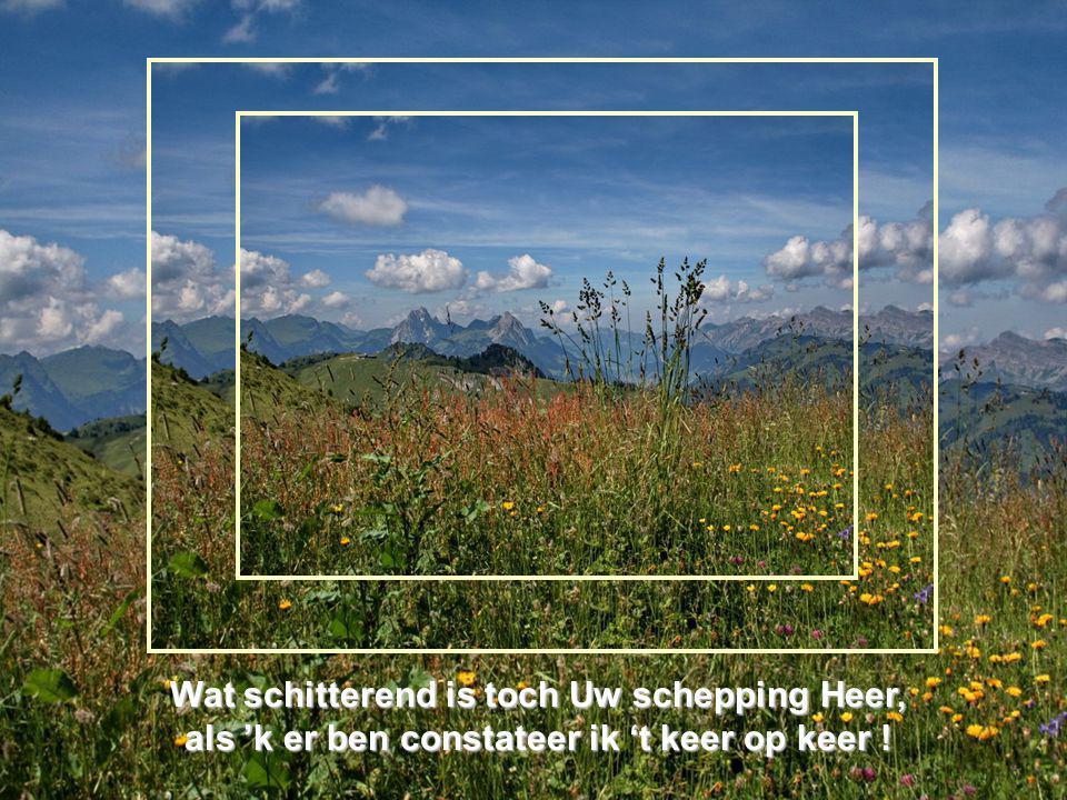 Wat schitterend is toch Uw schepping Heer, als 'k er ben constateer ik 't keer op keer !