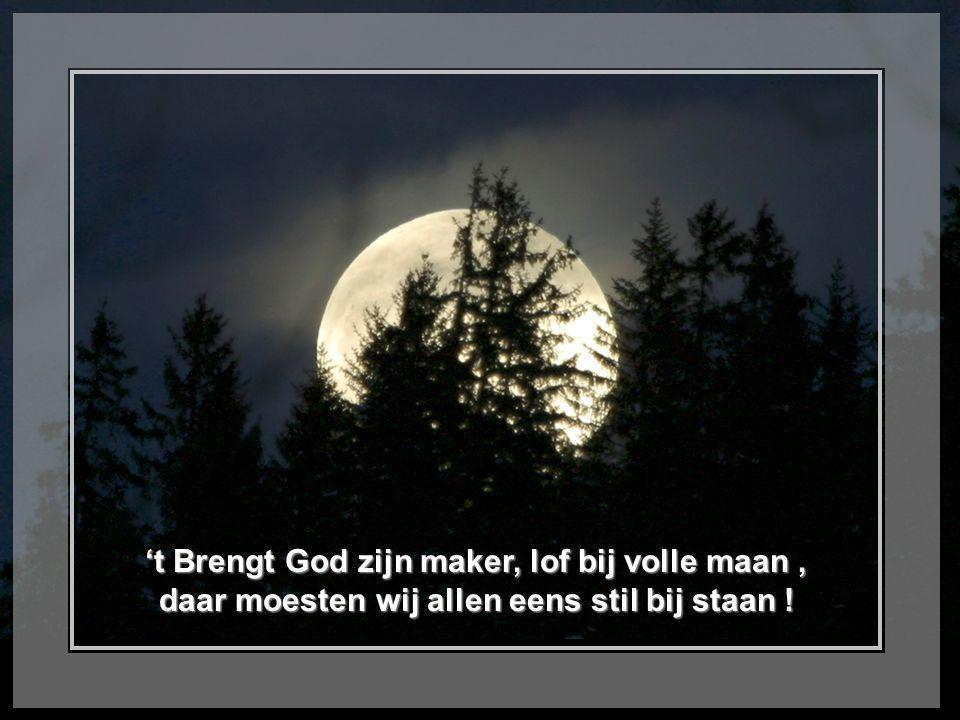 't Brengt God zijn maker, lof bij volle maan , daar moesten wij allen eens stil bij staan !