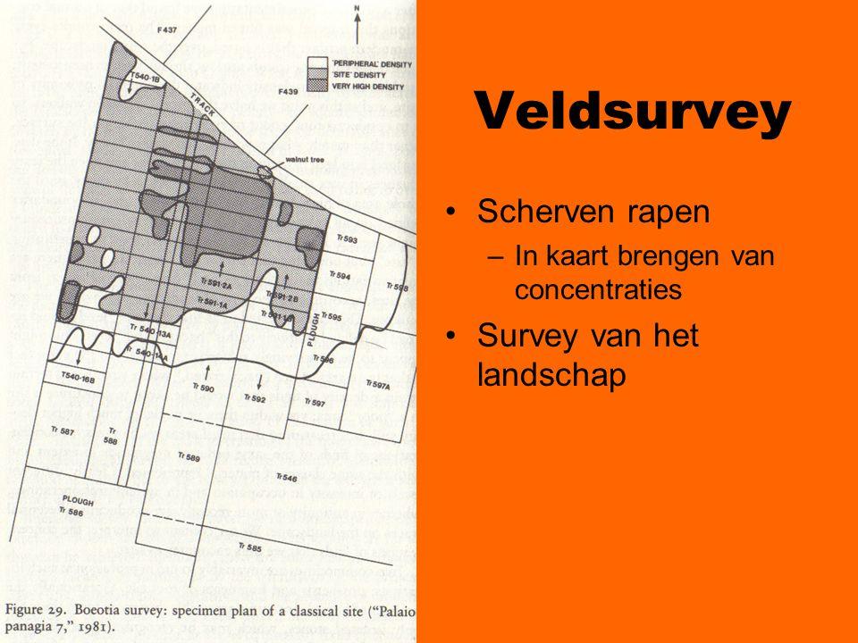 Veldsurvey Scherven rapen Survey van het landschap