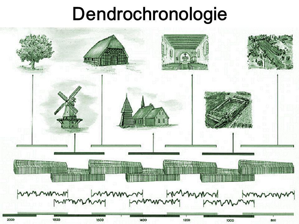 Dendrochronologie