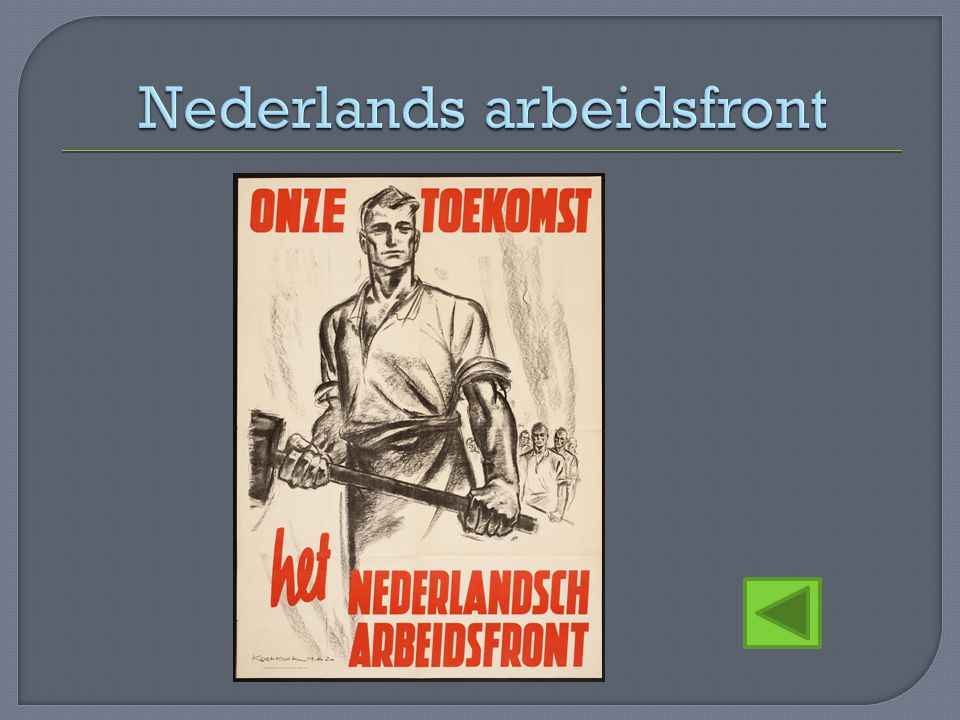 Nederlands arbeidsfront