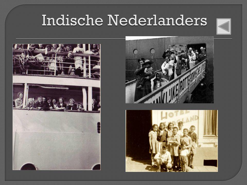 Indische Nederlanders