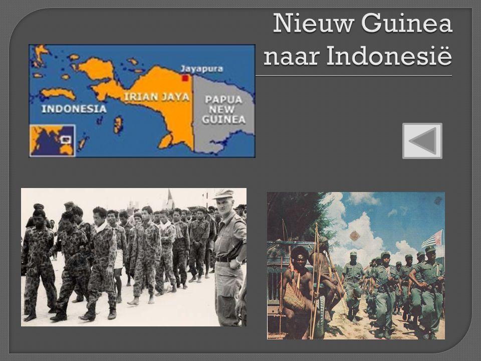 Nieuw Guinea naar Indonesië