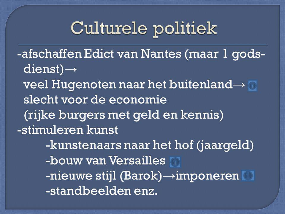 Culturele politiek