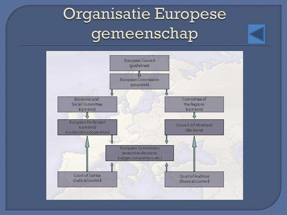 Organisatie Europese gemeenschap