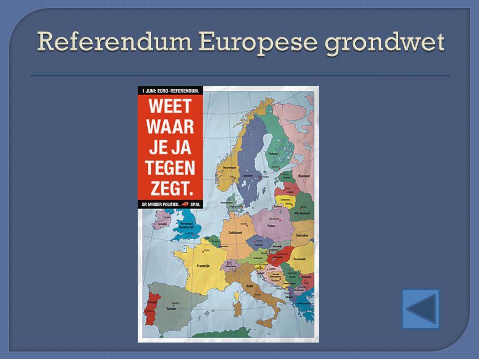 Referendum Europese grondwet