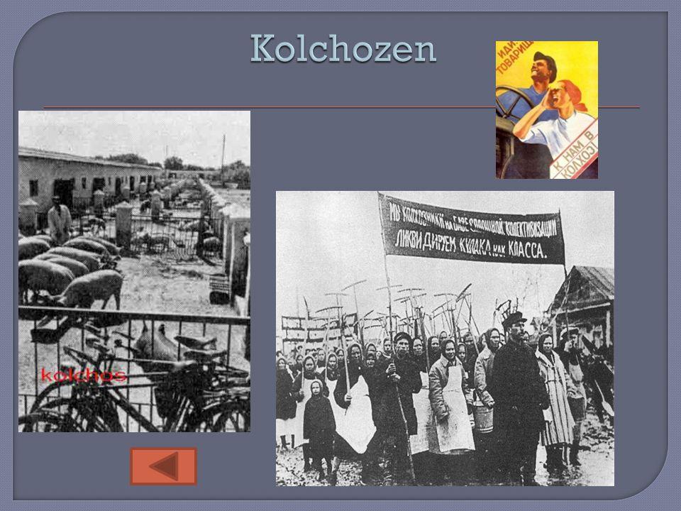 Kolchozen