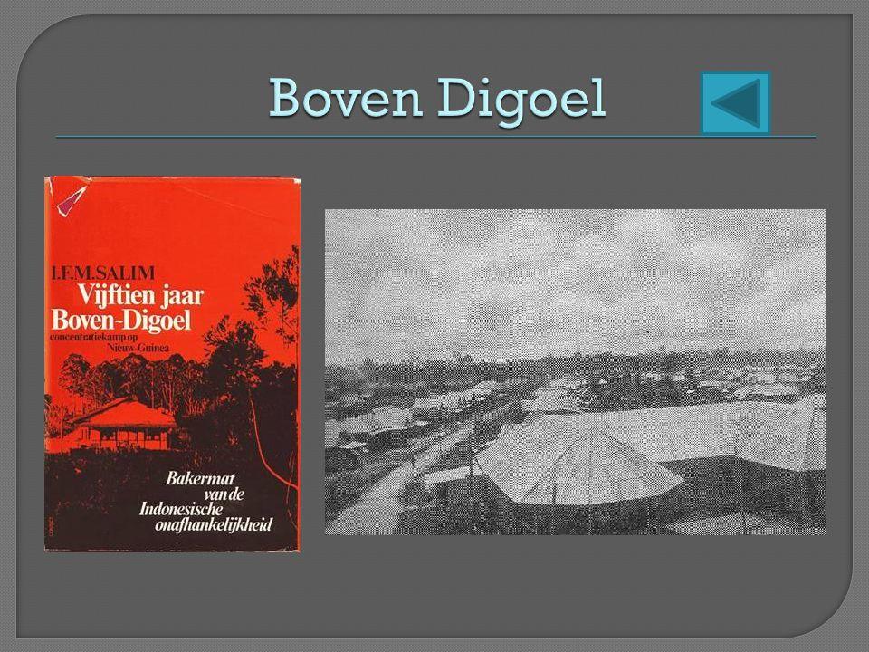 Boven Digoel