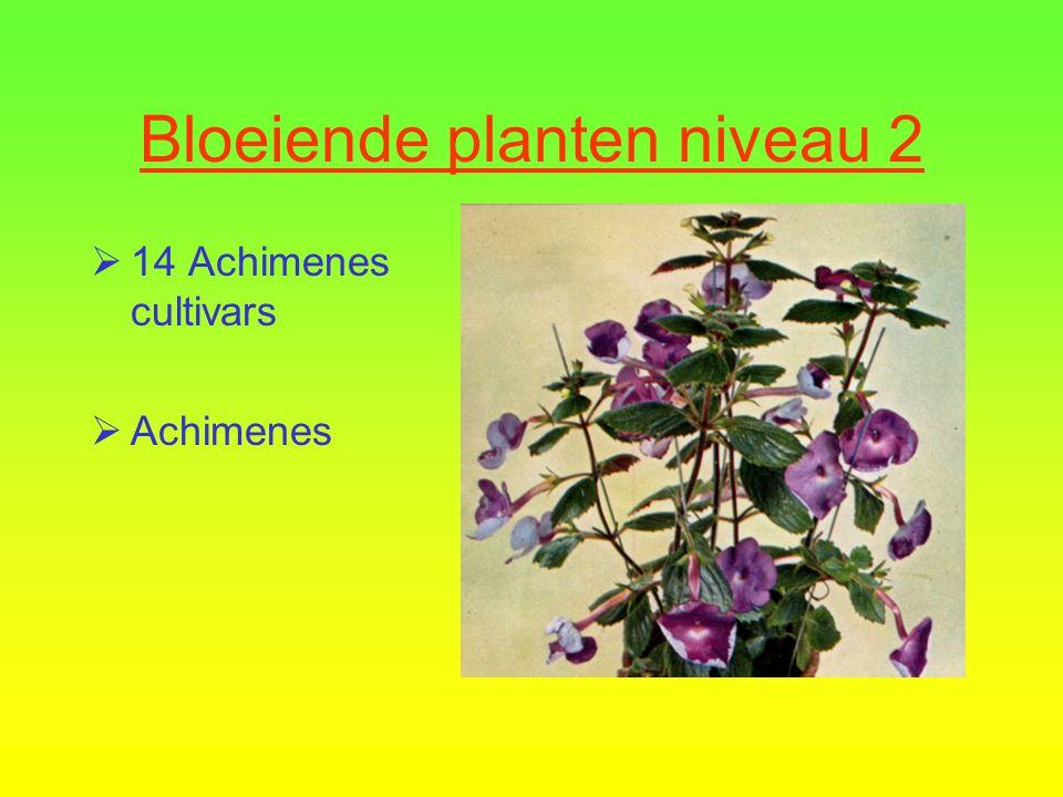 Bloeiende planten niveau 2