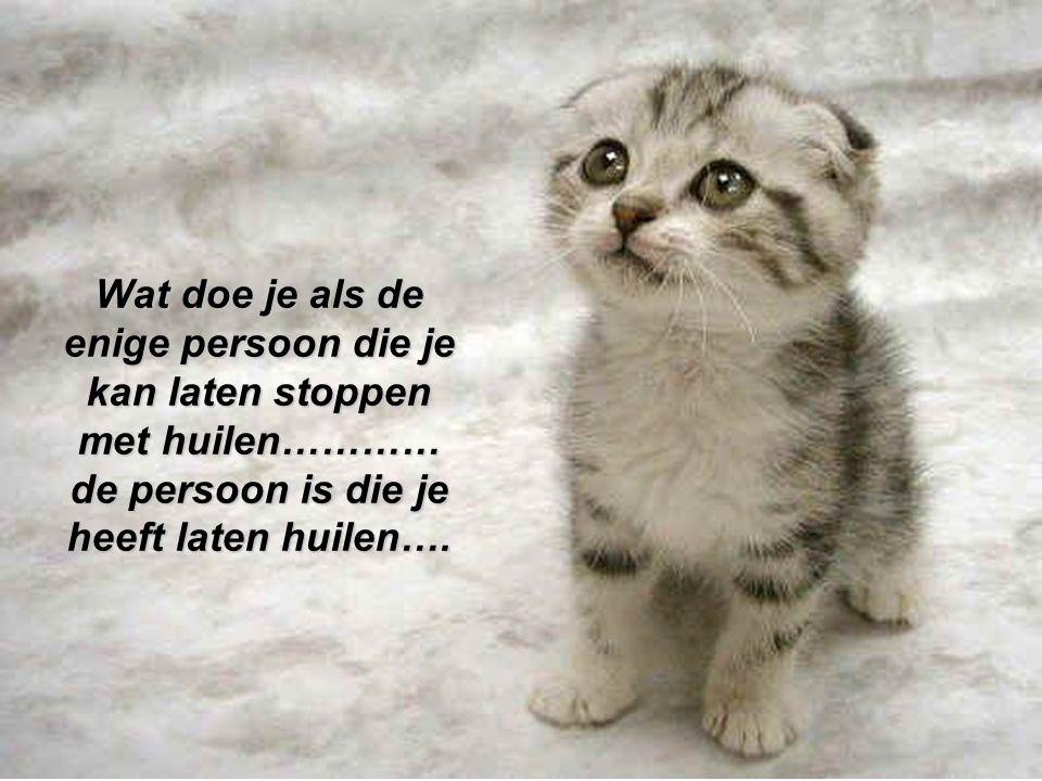 Wat doe je als de enige persoon die je kan laten stoppen met huilen………… de persoon is die je heeft laten huilen….
