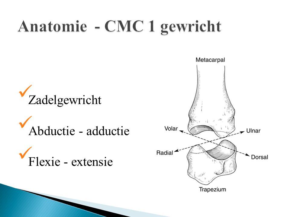 Anatomie - CMC 1 gewricht