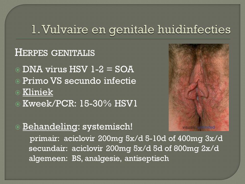 1. Vulvaire en genitale huidinfecties