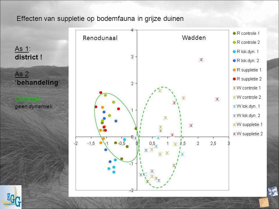 Effecten van suppletie op bodemfauna in grijze duinen