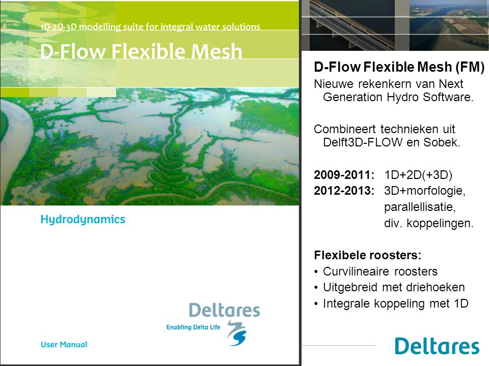 D-Flow Flexible Mesh (FM)