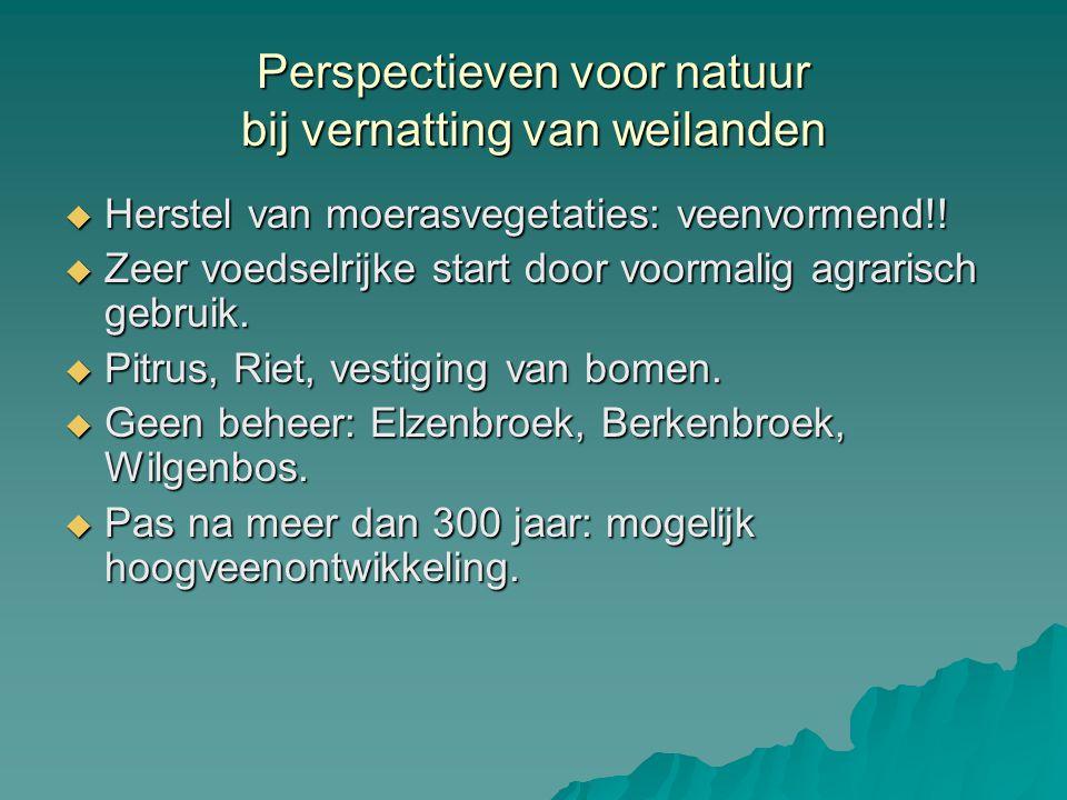 Perspectieven voor natuur bij vernatting van weilanden