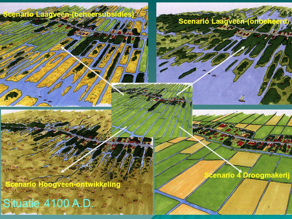 Situatie 4100 A.D. Scenario Laagveen-(beheersubsidies)