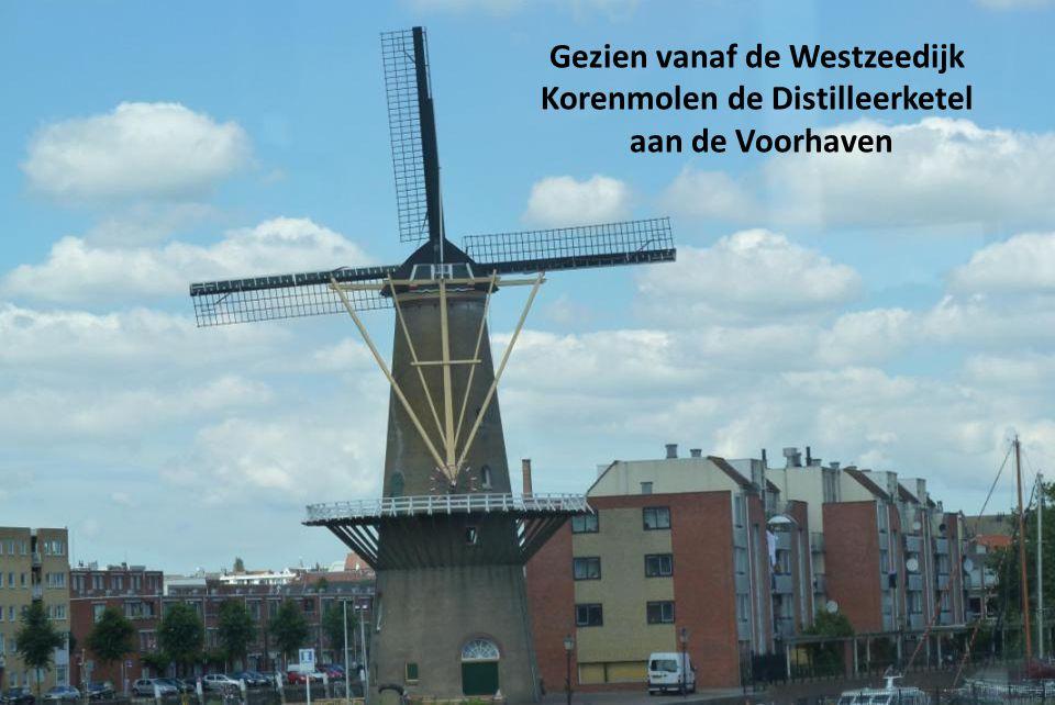 Gezien vanaf de Westzeedijk Korenmolen de Distilleerketel