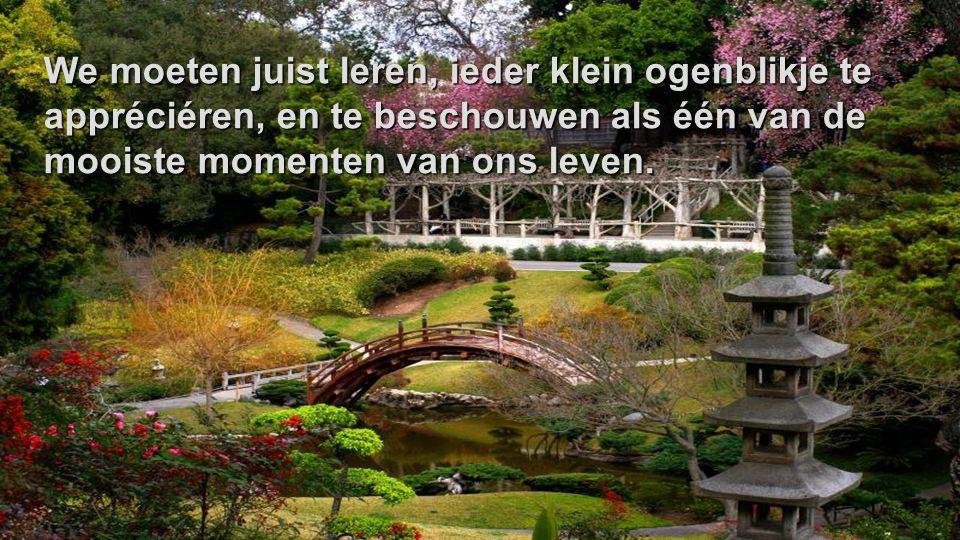 We moeten juist leren, ieder klein ogenblikje te appréciéren, en te beschouwen als één van de mooiste momenten van ons leven.
