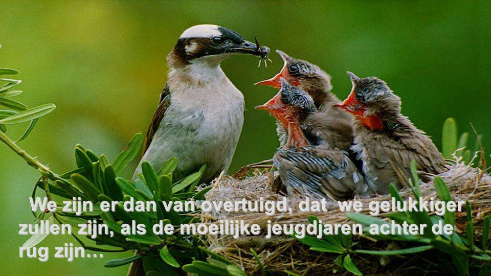 We zijn er dan van overtuigd, dat we gelukkiger zullen zijn, als de moeilijke jeugdjaren achter de rug zijn…