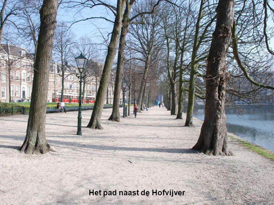 Het pad naast de Hofvijver
