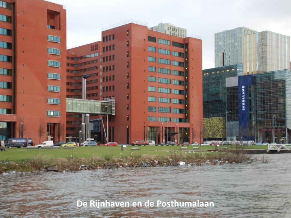 De Rijnhaven en de Posthumalaan
