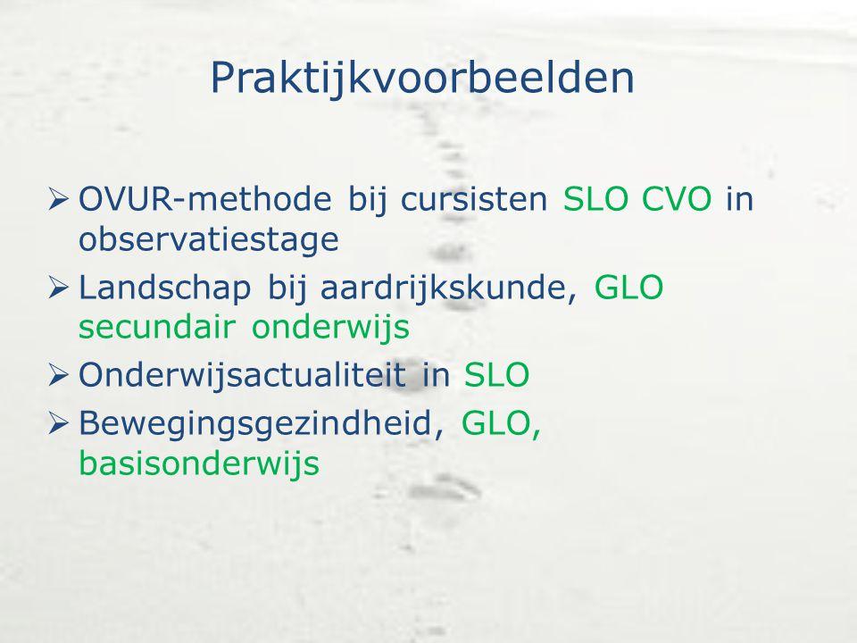Praktijkvoorbeelden OVUR-methode bij cursisten SLO CVO in observatiestage. Landschap bij aardrijkskunde, GLO secundair onderwijs.