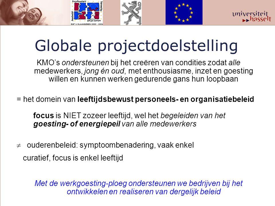 Globale projectdoelstelling