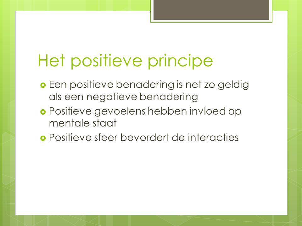 Het positieve principe