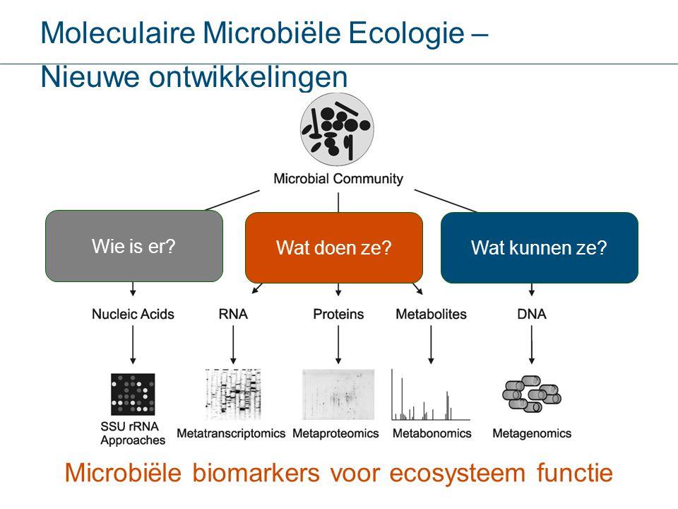 Microbiële biomarkers voor ecosysteem functie
