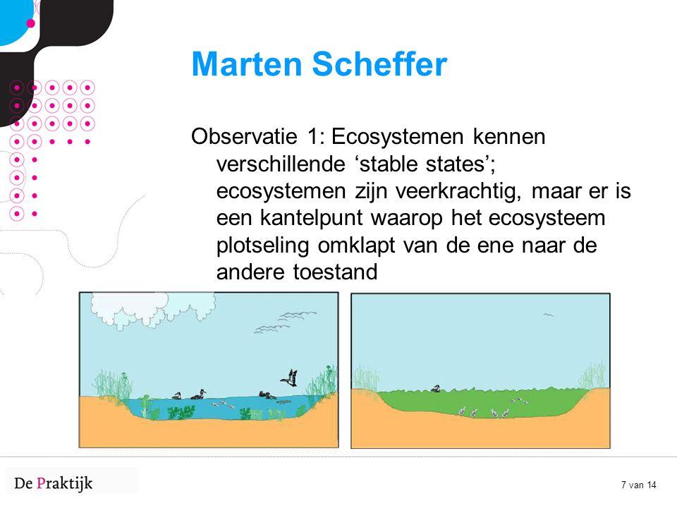 Marten Scheffer