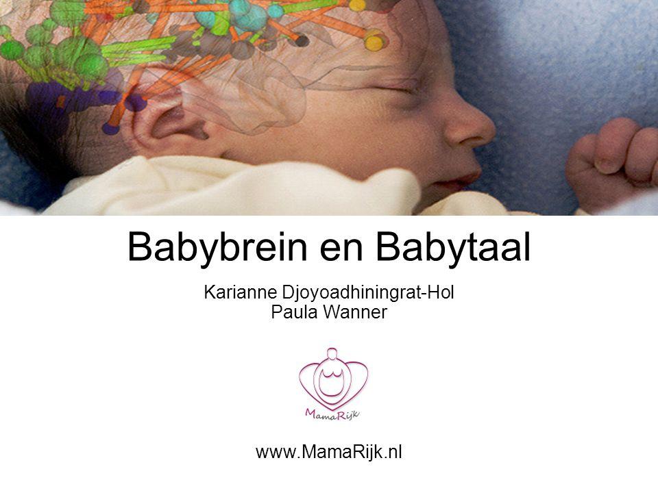 Karianne Djoyoadhiningrat-Hol Paula Wanner www.MamaRijk.nl