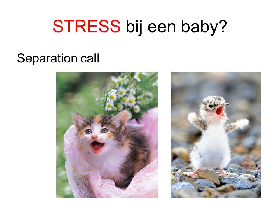 STRESS bij een baby Separation call