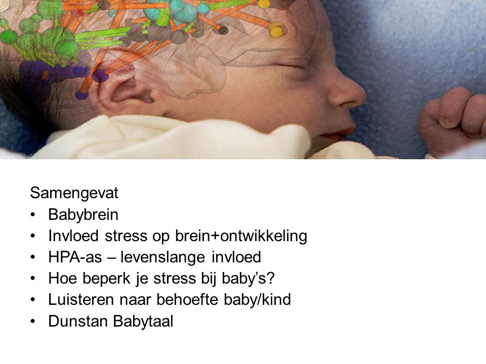 Babybrein en Babytaal Samengevat Babybrein