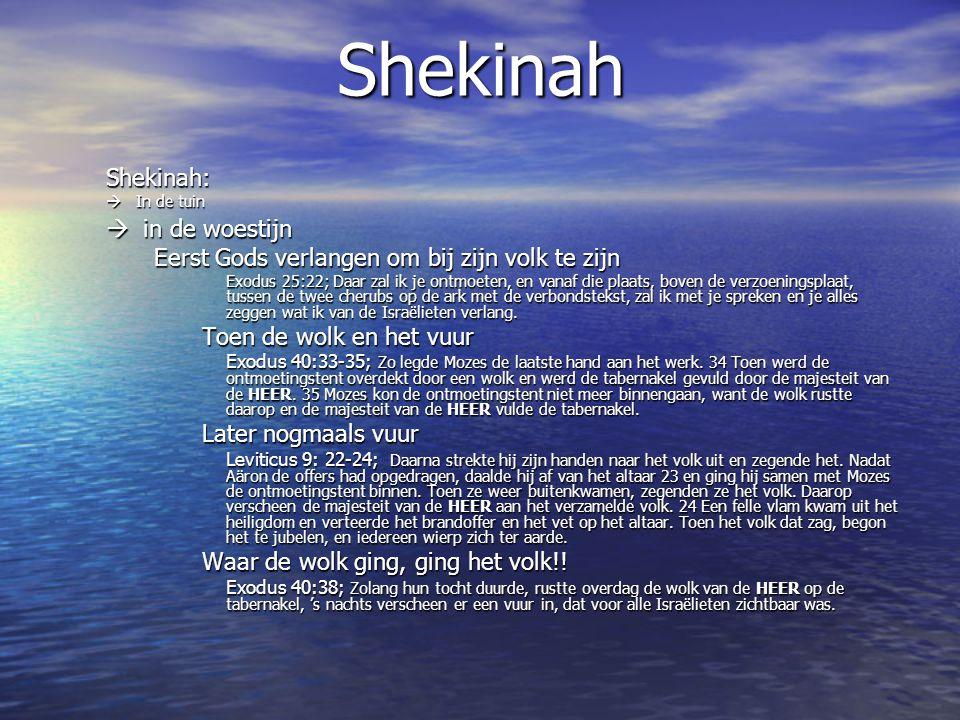 Shekinah Shekinah: in de woestijn Toen de wolk en het vuur
