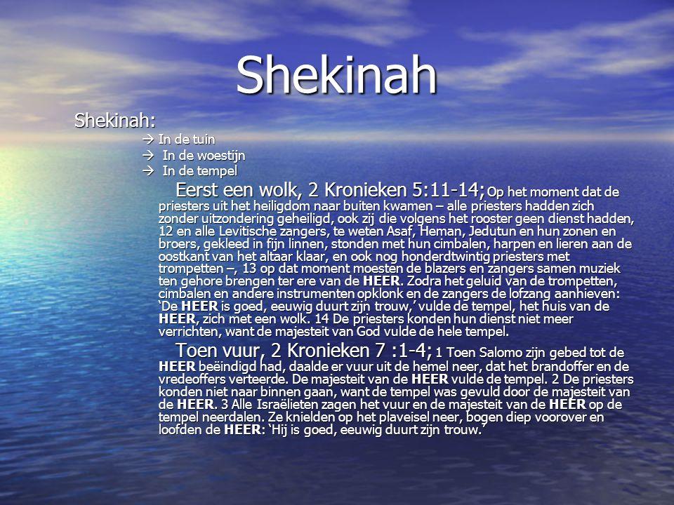 Shekinah Shekinah:  In de tuin. In de woestijn. In de tempel.