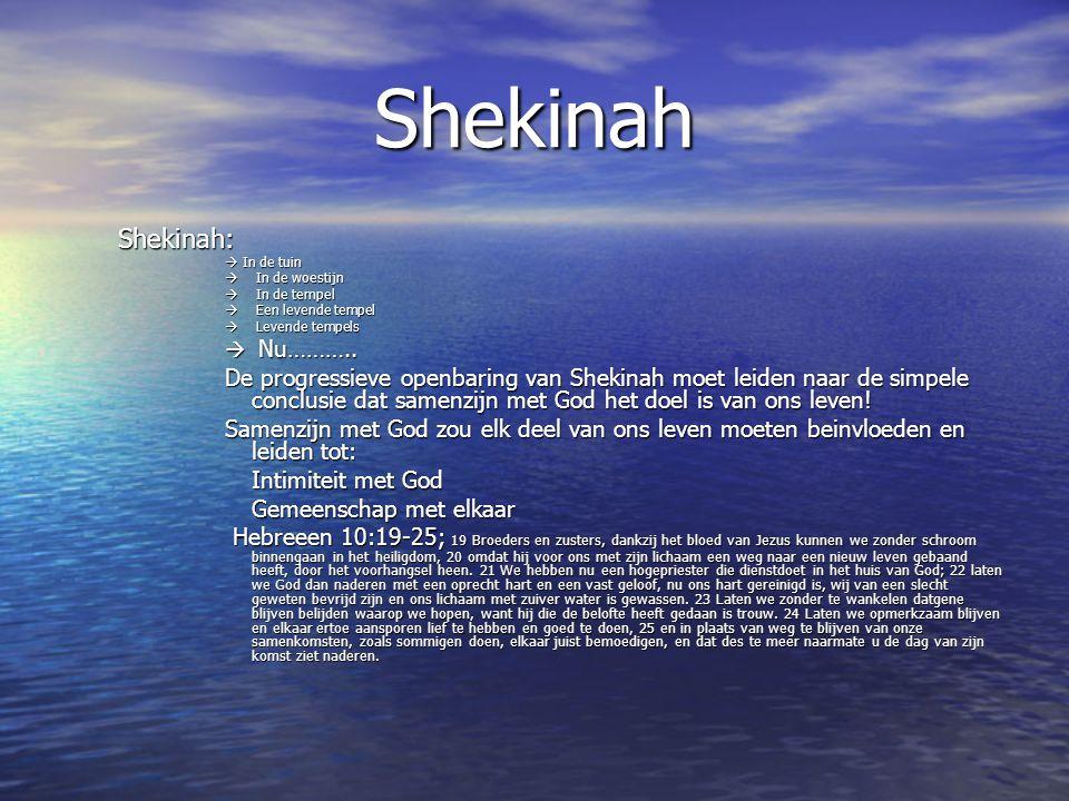 Shekinah Shekinah:  In de tuin. In de woestijn. In de tempel. Een levende tempel. Levende tempels.