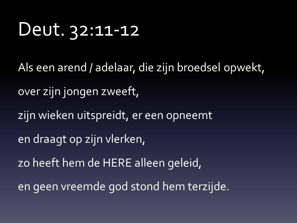 Deut. 32:11-12