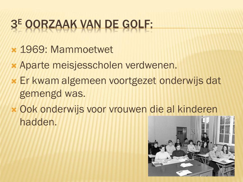 3e oorzaak van de golf: 1969: Mammoetwet