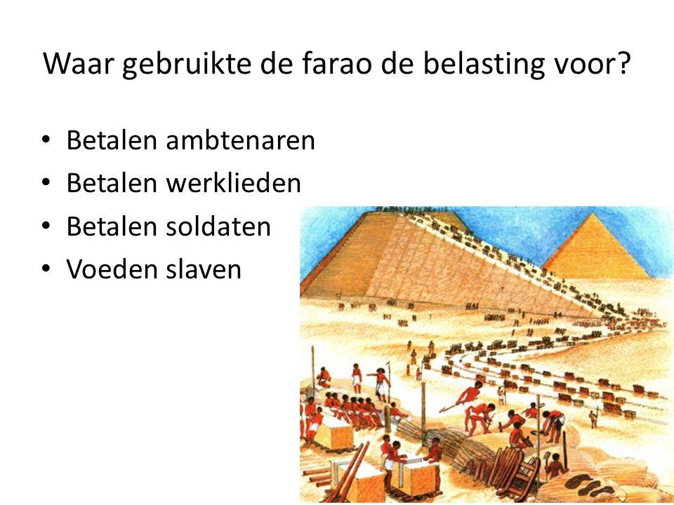 Waar gebruikte de farao de belasting voor