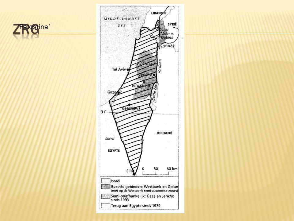 zrg 'Palestina'