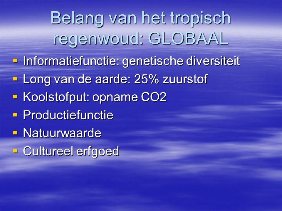 Belang van het tropisch regenwoud: GLOBAAL