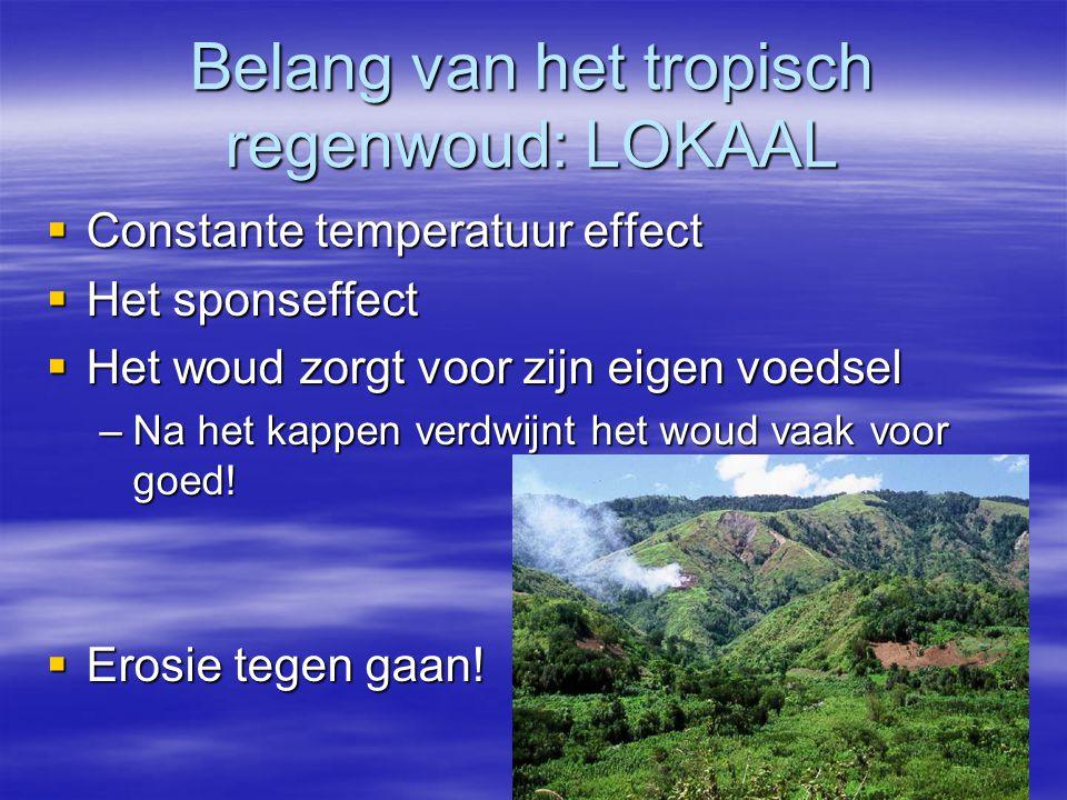 Belang van het tropisch regenwoud: LOKAAL
