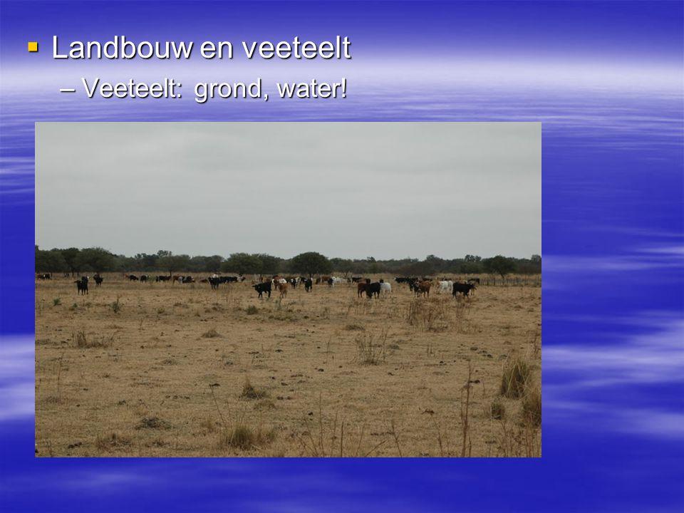 Landbouw en veeteelt Veeteelt: grond, water!