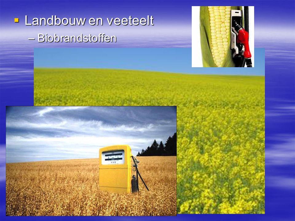 Landbouw en veeteelt Biobrandstoffen